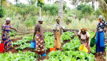 LIPSTICK-women-in-agric